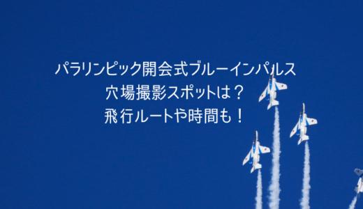パラリンピック開会式ブルーインパルスの穴場撮影スポットは?飛行ルートや時間も!