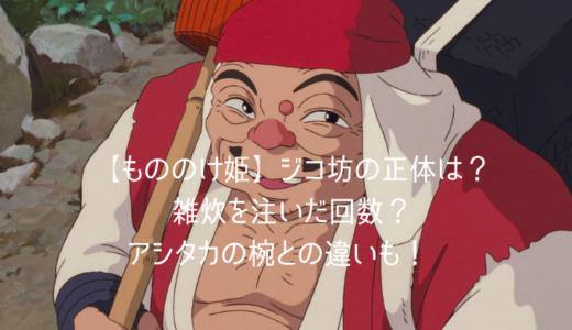 【もののけ姫】ジコ坊の正体は?雑炊を注いだ回数やアシタカとのお椀の違いも!